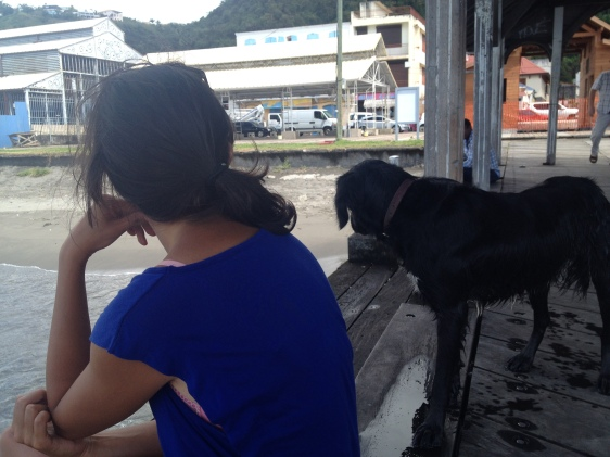 Här i St Pierre hittade en annan hund oss likt Zinc på Mustique...Den lämnade oss dock efter ca 30 minuter