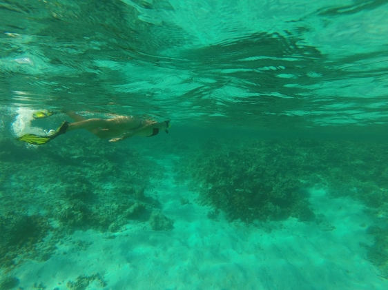 Hanna snorklar