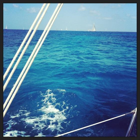 Många segel på fjärden...små på denna bild men det är hur många som helst!