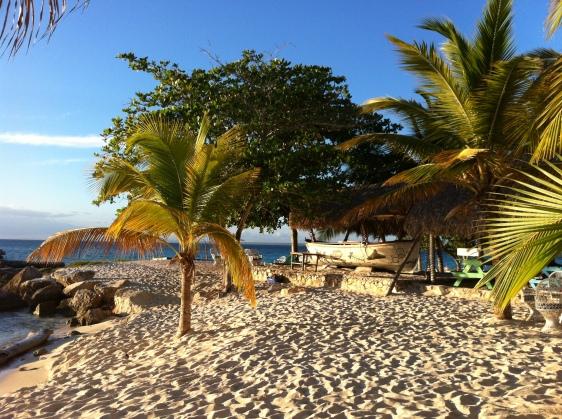 Stranden på Isla Saona